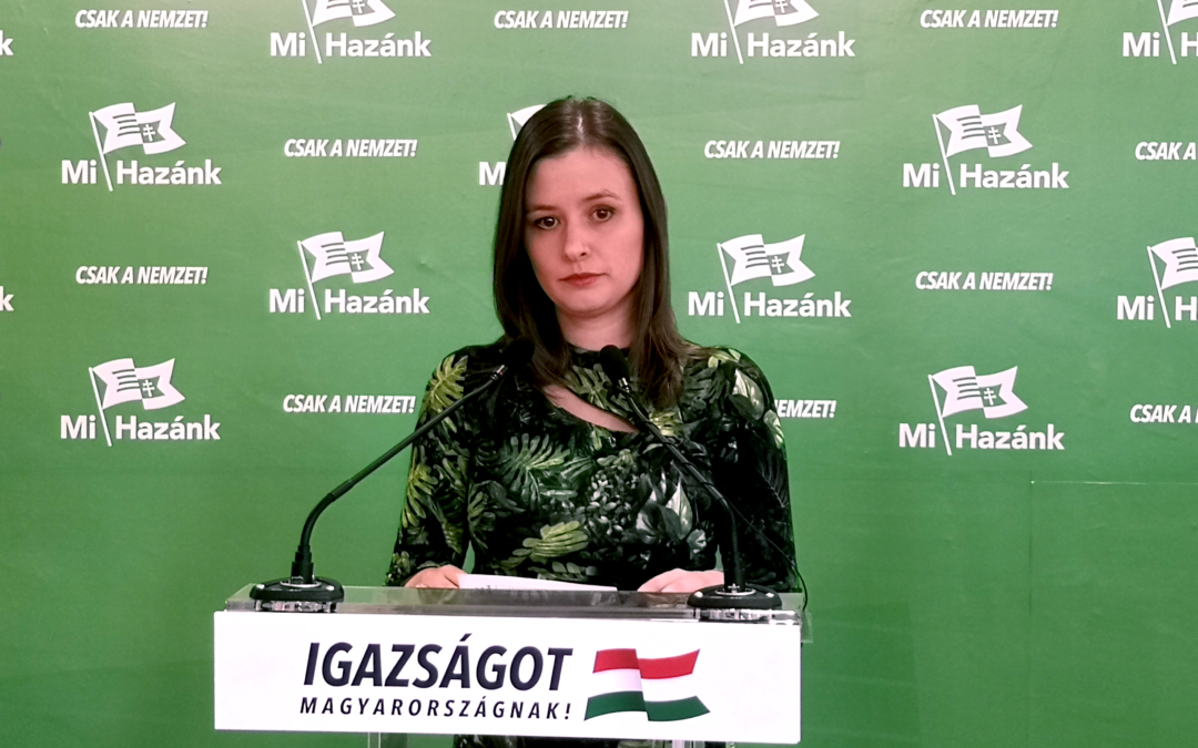 A magyar gyerekeknek követel kártérítést a Mi Hazánk