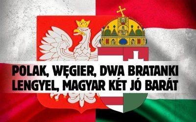 Mi Hazánk: veled vagyunk, Varsó!